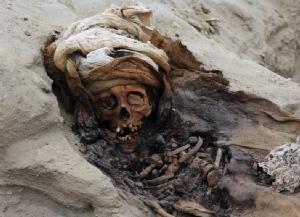 นักโบราณคดีเปรูขุดเจอสุสานเด็กถูกฆ่า 'บูชายัญ' ใหญ่สุดเท่าที่เคยพบ
