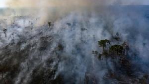 Weekend Focus: โลกระทึก!! อภิมหาไฟป่าล้างผลาญ 'แอมะซอน' ผู้นำบราซิลเสียงอ่อนรับความช่วยเหลือ G7