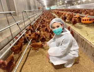 ซีพีเอฟเปิดฟาร์มไก่ไข่ Cage Free