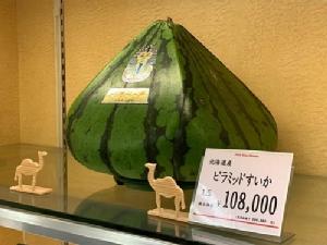 """ผลไม้ทรงแปลกจากญี่ปุ่น """"แตงโมพีระมิด"""" ราคาลูกละ 10,000 เยน!"""