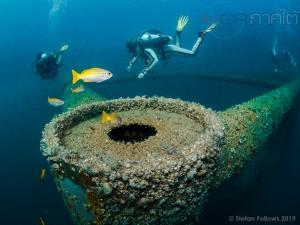 สถาบันปิโตรเลียมไทยลงติดตามผล 6 ปีปะการังเทียม พบนิเวศใต้ทะเลขยายตัวเพิ่มขึ้น