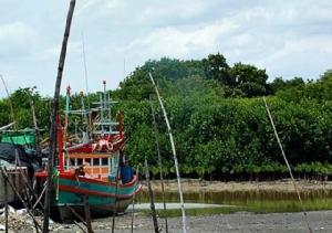 """ทลฉ.ใจป้ำทุ่มกว่า 600 ล้าน ผุด """"ตลาดปลา"""" แบบญี่ปุ่น ให้ชาวบ้านรอบท่าเรือใช้แบบฟรีๆ"""