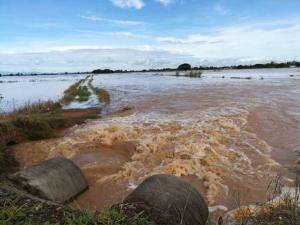 น้ำยมทะลักถึงพิษณุโลก ชลประทานเร่งผันเข้าทุ่งบางระกำแล้วกว่า 200 ล้าน ลบ.ม.
