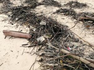 คลื่นแรงซัดขยะทะเลเกลื่อนชายหาดปอดะ เจ้าหน้าที่เร่งเก็บกวาด