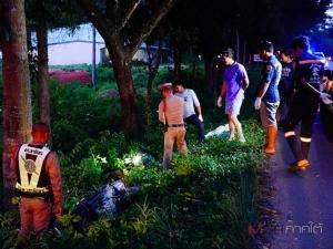 สลด! 2 หนุ่มขี่ จยย.กลับไม่ถึงบ้าน เสียหลักชนต้นไม้ดับคู่ที่พัทลุง คาดคนขับหลับใน