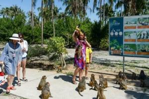 คนแห่เที่ยวเกาะลิงเวียดนามคึกคักโชว์ลอดห่วง-ขี่จักรยาน นักอนุรักษ์สับทรมานสัตว์