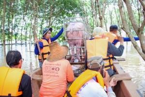 อุบลฯน้ำท่วมหนัก พ่อเมืองประกาศพื้นที่ภัยพิบัติ3อำเภอ