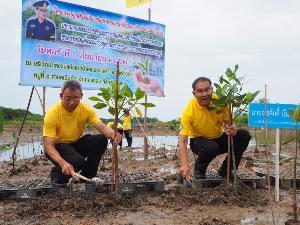 ทช. เดินหน้าโครงการปลูกต้นไม้-ปลูกป่า เฉลิมพระเกียรติ ร่วมสร้างพื้นที่สีเขียวป่าชายเลนเมืองระยอง 100 ไร่ 1 ล้านกล้า