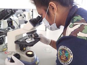 """ศูนย์ปฏิบัติการอุทยานแห่งชาติทางทะเลที่ 3 จ.ตรัง เตรียมวิจัย """"ไมโครพลาสติก"""" ในหอยประจำถิ่น จ.ตรัง"""