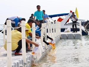 กรมประมงผนึกกำลัง CP-TRUE สร้างปะการังเทียม ส่งมอบชุมชนสงขลา-นราธิวาส