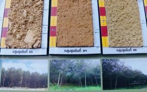 """สนง.พัฒนาที่ดินเขต 12 เปิดบ้านแห่งการอนุรักษ์ดินและน้ำ สร้างการรับรู้ """"วันดินโลก"""""""