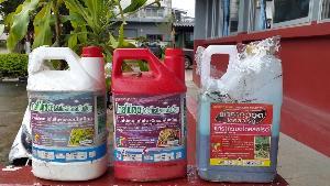ชาวไร่ข้าวโพดแม่ฮ่องสอนหอบยาฆ่าหญ้ายี่ห้อดังขึ้นโรงพัก บอกบริษัทขายผ่อนให้-พ่นแล้วกลับไร้ผล