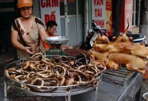 นครโฮจิมินห์แนะประชาชนเลิกกินเนื้อหมา รักษาภาพลักษณ์ประเทศ