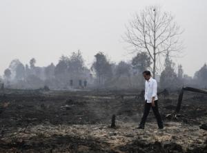 ประธานาธิบดีโจโค วิโดโด แห่งอินโดนีเซียลงพื้นที่ตรวจสอบสถานการณ์ไฟป่าในเมืองเปอลาลาวัน จังหวัดรีเยา เมื่อวันที่ 17 ก.ย.