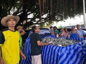 ส.ประมงพื้นบ้าน ประจวบฯ ขนปลาทะเลกว่า 1 ตัน ช่วยน้ำท่วมอุบลฯ