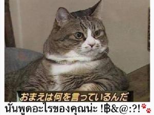 "Q:ญี่ปุ่น ""ถ้าผู้ชายพูดว่าต้องนอนกับผม แล้วผมจะช่วยคุณ"" จะตอบอย่างไร?!"