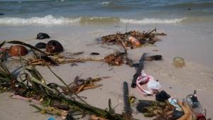 นักท่องเที่ยวผงะ!! แพขยะถูกซัดเข้าชายหาดหัวหินตลอดแนวเกือบ 10 กม.