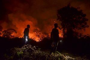ภาพไฟป่าในอินโดนีเซีย ต้นเหตุของหมอกควันในหลายพื้นที่ของอาเซียน Wahyudi / AFP
