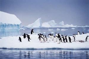 'รศ.ดร.สุชนา ชวนิตย์' ผู้ไปสัมผัสขั้วโลก! บอกภาวะโลกร้อนรุนแรงแค่ไหน