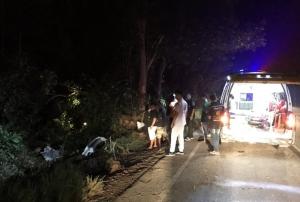 ไม่ชินทางโหด! รถพ่วงขนขี้ยางพาราเต็มคัน หลุดโค้งตกเขาภูแลนคา ชัยภูมิพังยับ ดับ 1 ศพ