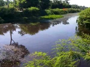ซ้ำซาก! ชาวบ้านเดือดร้อนหนักน้ำเสียจากบ่อขยะเทศบาลเมืองคอนไหลลงคลองสาธารณะอีกแล้ว