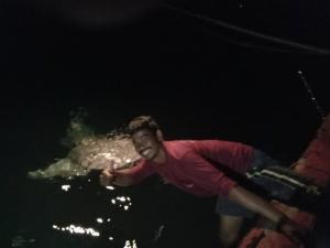 พี่วาฬอยากเล่นด้วย!! นักตกปลาเจอฉลามวาฬ ที่บ้านกรูดเข้ามาทักทายนานเกือบชั่วโมง
