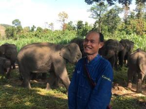 นายเลคา วสันต์ฤดู ควาญช้างผู้มากประสบการณ์