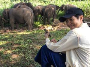 นางสาวสิริพร ชาติวานิชย์ ครอบครัวเจ้าของช้างโขลงนี้ที่มอบให้สถาบันคชบาลดูแล