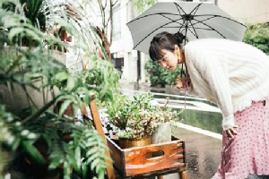 ชิบูย่า 100% คู่มือ! ชอปปิ้งและสถานที่ท่องเที่ยวรอบๆ สถานีชิบูย่า
