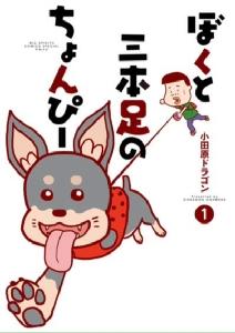 เมื่อหนุ่มญี่ปุ่นเปรียบเทียบสุนัขสามขากับสาวญี่ปุ่น