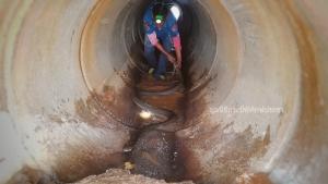 พี่ดุนะ! งูจงอางยาวประมาณ 4 เมตร ซ่อนตัวในท่อระบายน้ำ กู้ภัยกระบี่เสี่ยงตายจับมาได้