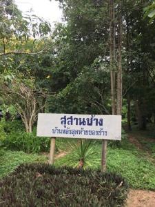 บ้านหลังสุดท้ายของช้าง หลุมฝังศพช้างที่ตายที่นี่