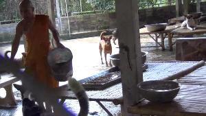 (ชมคลิป)อึ้งหนัก! คนแห่ทิ้งสุนัขเพิ่ม ถึงขั้นจับใส่กรงส่งเคอรี่แทบล้นวัดเวฬุวนาราม