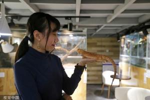 (ชม) ร้านกาแฟ+สัตว์เลี้ยง เทรนด์ฮิตรักสัตว์ในเฉิงตู