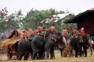 """ตื่นตาลีลาช้างไทยในงาน """"มหัศจรรย์งานแสดงช้างสุรินทร์ และงานเลี้ยงอาหารช้างที่ยิ่งใหญ่ของโลก"""""""