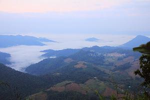 ทะเลหมอกเมืองสุพรรณ ชมจากบนยอดเขาเทวดา อช.พุเตย