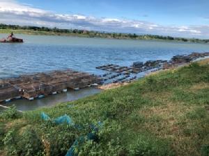 น้ำโขงลดเหลือแค่ 1 เมตร กระทบเลี้ยงปลากระชังเกษตรกรต้องหยุดเลี้ยงชั่วคราว