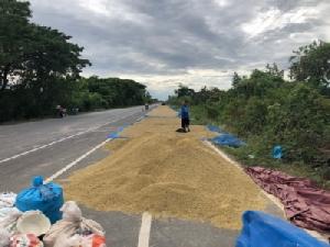 ชาวบ้านที่หนองคายยึดถนนเลนจักรยานตากข้าวยาวหลายกิโลเมตร