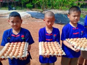 ตอบโจทย์!! ซีพีเอฟ หนุนโครงการเลี้ยงไก่ไข่เพื่ออาหารกลางวันนักเรียน ยาวนานถึง 3 ทศวรรษ