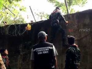 ทหารเผชิญหน้ากองทัพมดขนใบกระท่อมกลางป่าชายแดนไทย-มาเลย์ ก่อนทิ้งรถเผ่นหนี