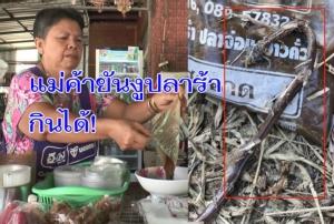 แม่ค้ายัน! งูที่หนุ่มบุรีรัมย์ผงะพบในถุงปลาร้าเป็นงูปลากินได้ ลั่นรับมาขายต่อเหตุรสแซ่บลูกค้าชอบ