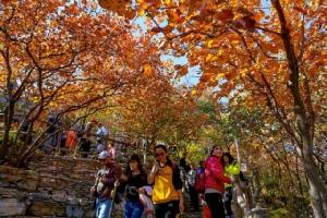 เซี่ยงไฮ้ ปักกิ่ง เมืองอันดับหนึ่ง-สอง ชิม ช้อป ใช้จ่ายบริโภคจีน