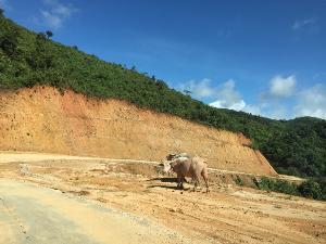 พม่าเปิดเดินรถท่าขี้เหล็ก-ตองจี-ย่างกุ้งครั้งแรก จ่อเพิ่มเส้นทางเชื่อมมูเซชายแดนจีนต่อ