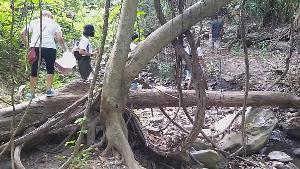 """สายผจญภัย! นักท่องเที่ยวตะลุยป่าสัมผัสธรรมชาติ """"น้ำตกลำเกลียว-สุโขทัย"""""""