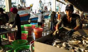 แฉต่างชาติผลักภาระบ.อาหารทะเลไทย บีบแก้ปัญหาแรงงานแต่ไม่ยอมจ่ายเพิ่ม
