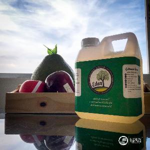 Eden Agritech  สารเคลือบธรรมชาติ ยืดอายุผักผลไม้ นวัตกรรมเกษตรไทย คว้ารางวัลเวทีระดับโลก