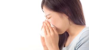 พยากรณ์โรครายสัปดาห์ 8-14 ธ.ค. เตือนป่วยไข้หวัดใหญ่เพิ่ม จากอากาศหนาวเย็น