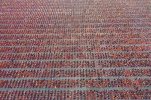 ธรรมกายโผล่มัณฑะเลย์จัดงานตักบาตรพระสงฆ์พม่า-ไทย 30,000 รูป