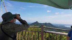 นักท่องเที่ยวต่างชาติจากออสเตรเลีย เดินทางมาสังเกตการอพยพของเหยี่ยว