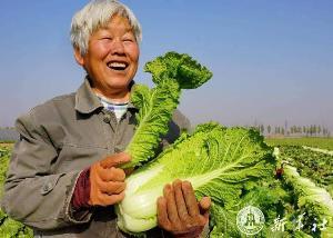 """จีนเตรียมปั้น """"เขตสาธิตการเกษตรล้ำสมัย""""ทั่วประเทศมุ่งเป็น 'ซิลิคอน แวลลีย์' ด้านการเกษตร 5"""